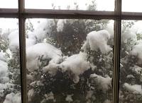 Alabama Snow (2/25/2015)