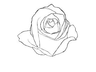 Draw Rose