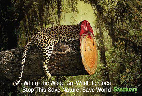 save nature The environment isn't the real 'save the world' issue, we are—and to fix us we needed redeeming understanding of our less-than-ideal human condition.