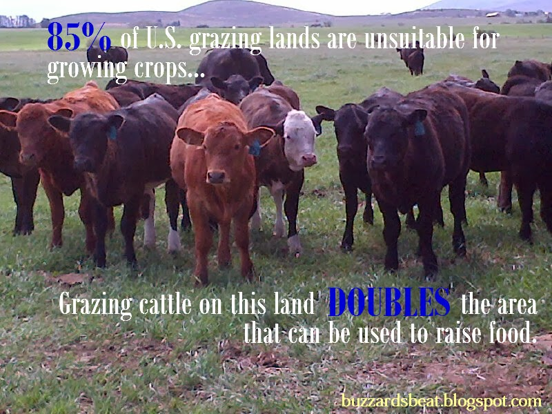 Wordless Wednesday: Sustainable Beef Production