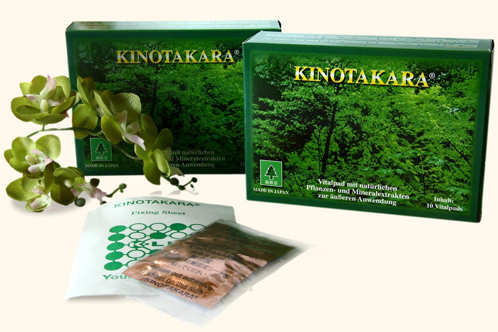 Τα Επιθέματα Αποτοξίνωσης Kinotakara