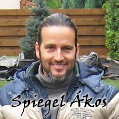 Spiegel Ákos - kertépítés