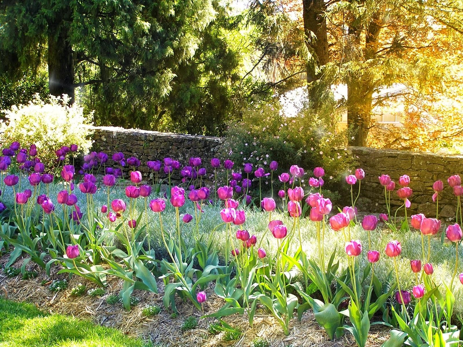 Mi pasi n la poes a llega abril con flores mil for Jardines de abril