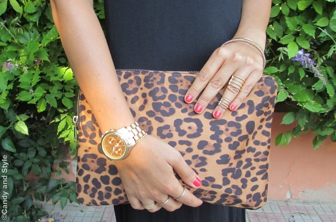 Leopard Clutch, Accessories - Details