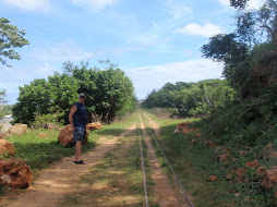 the sugar cane railroad