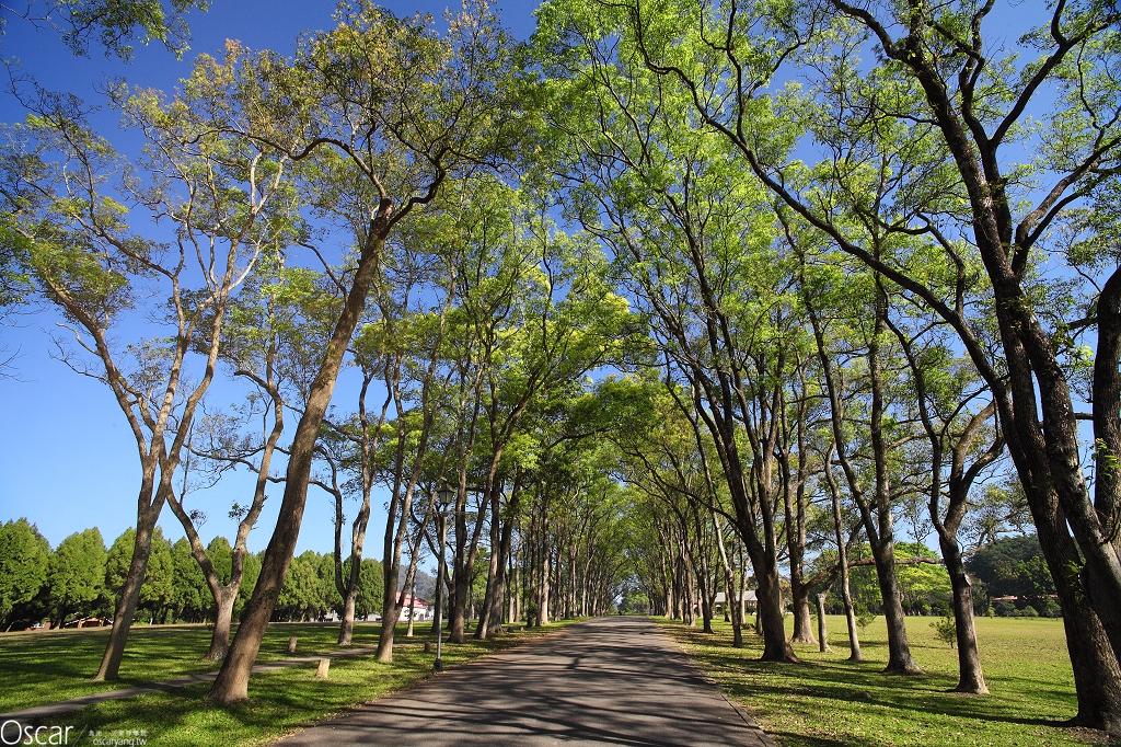 三育基督學院(三育中學) 魚池景點 日月潭推薦景點