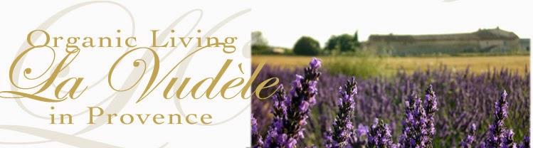 organic living in Provence - bio, veg, yoga