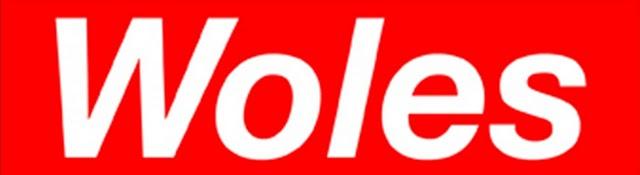 Woles, Kata Woles, Slow, Arti Woles, Apa Itu Woles, Apakah Woles, Kosa Kata Woles, F's Community