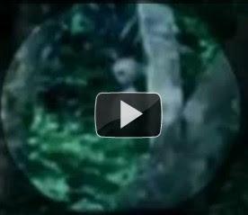 Foto Gambar Penampakan Alien UFO Hutan Amazon Oktober 2011