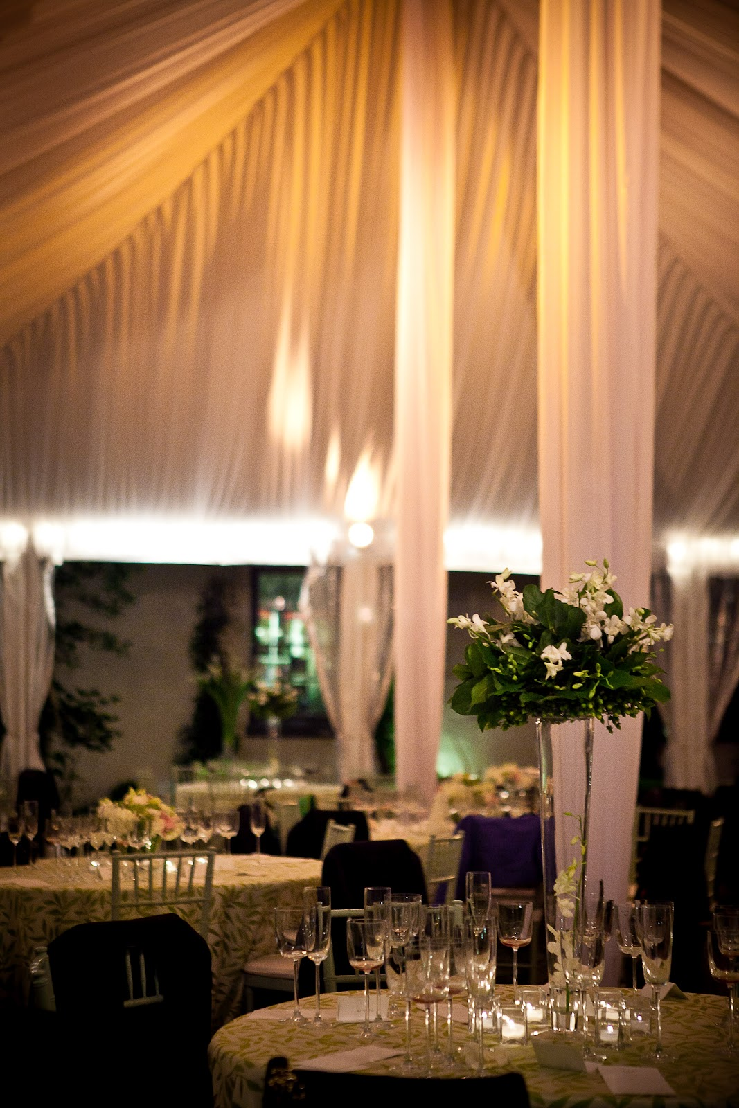 Thanks Davis and Sugarplum for always making out tented events look spectacular! & Blog | Engaging Affairs - Part 44