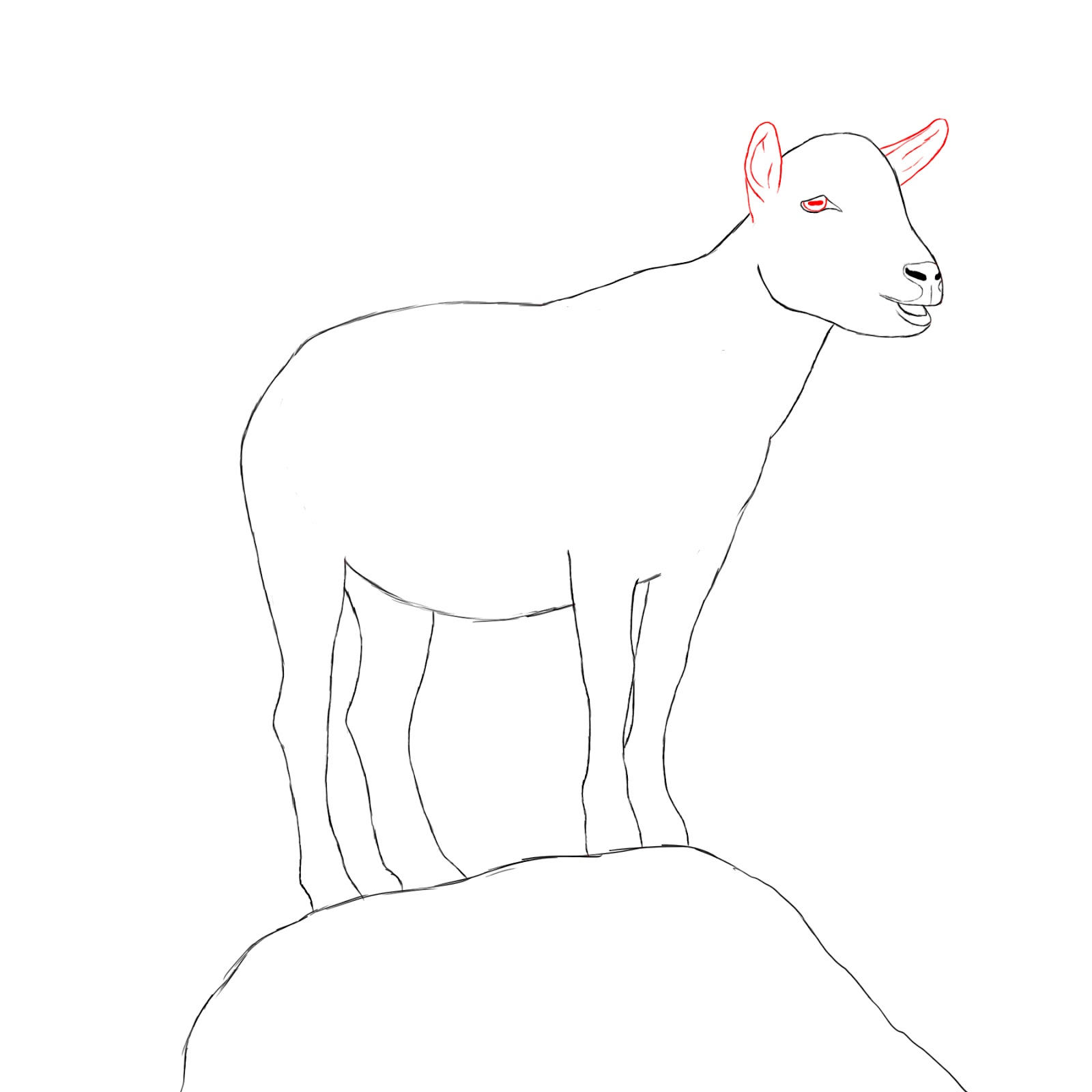 how to draw a goat head step by step