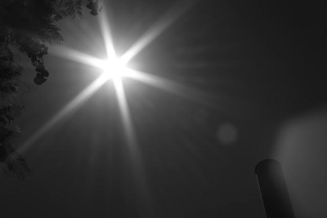 Under the Sun of Seville