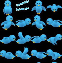 Toturial : Burung Twitter Terbang Terbang Terbang Dan Terbang.