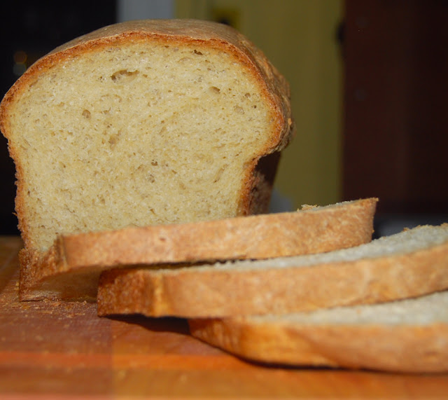Fast Whole-Wheat Bread