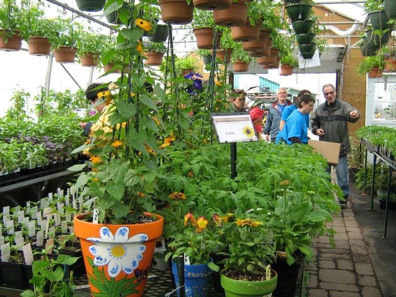 je suis au jardin        les billets d u0026 39 une horticultrice passionn u00e9e
