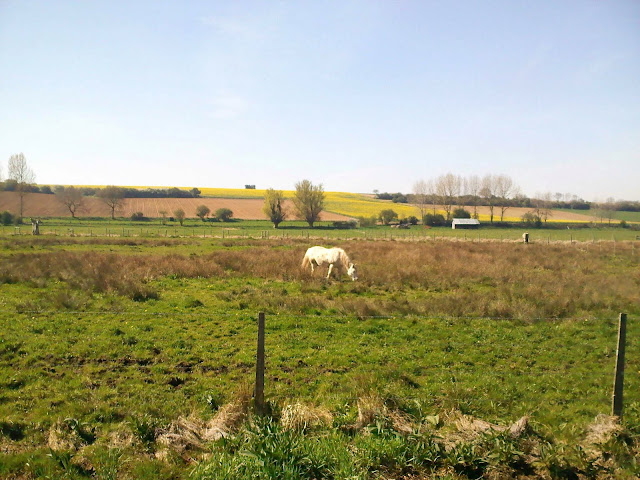 campagne picarde
