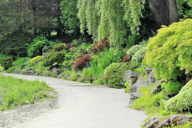 Best Attractions In Toronto: Toronto Botanical Garden