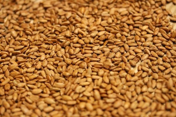 roasted-sunflower-seeds