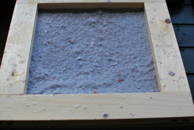 pulp in frame with deckle in place