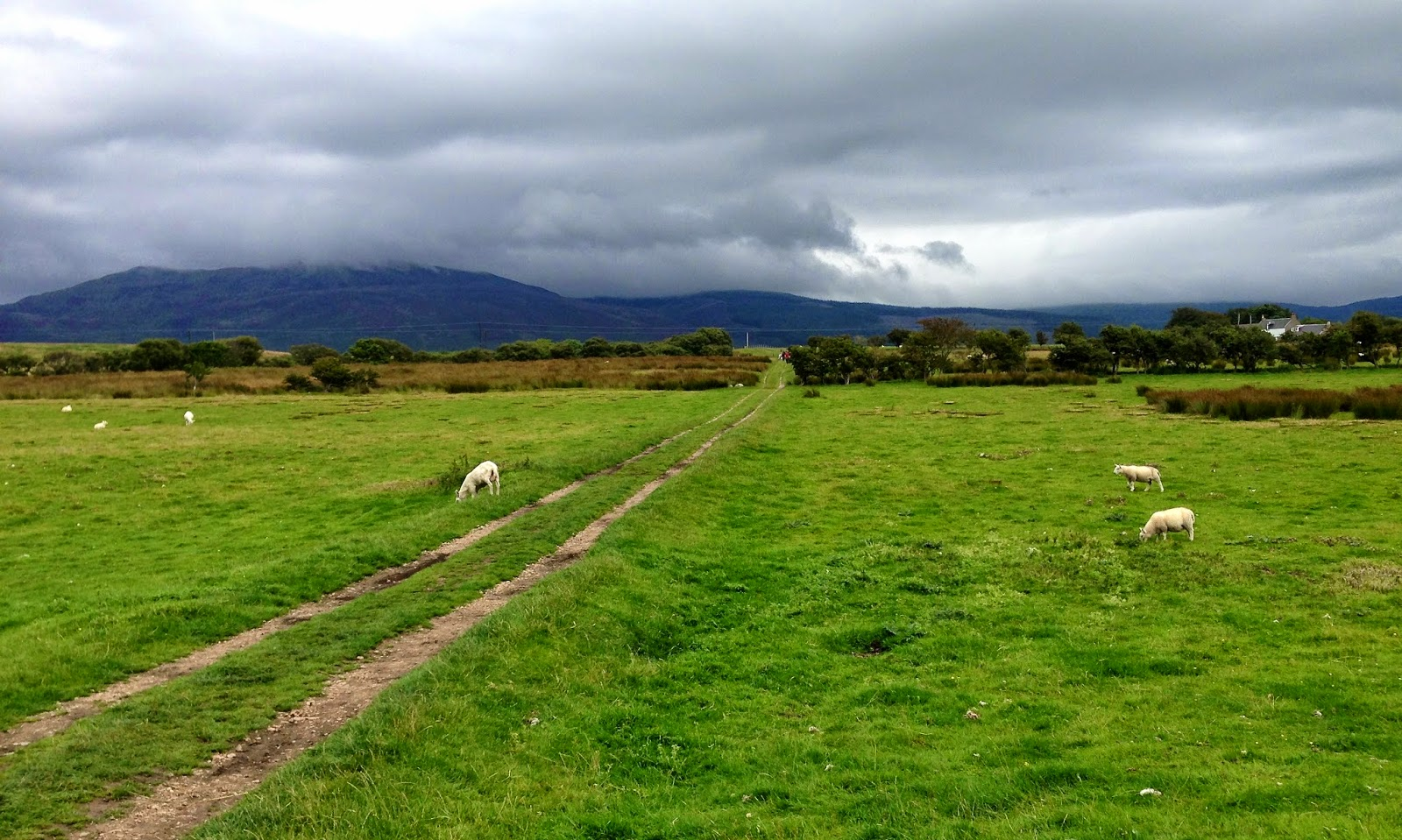 Path to the Machrie Moor stone circles