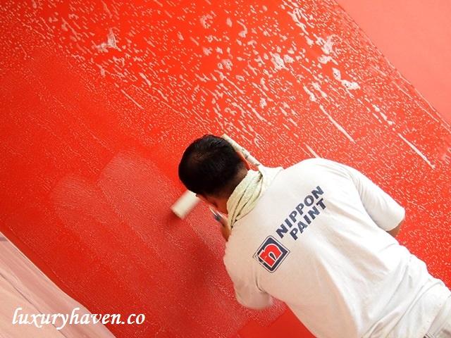 nippon paint study room anti-fungus coat