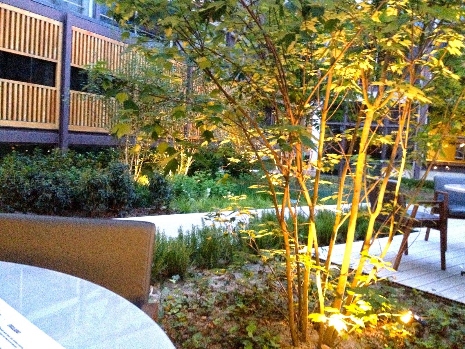 Bosco de Lobos, madrid, restaurante, chueca, malasaña, pasta pizza colegio arquitectos terraza