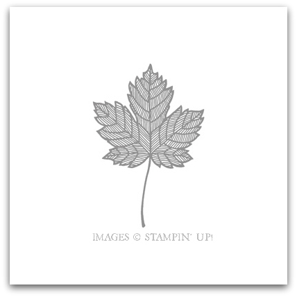 Magnificent Maple Stamp Brush Digital Download by Stampin' Up!