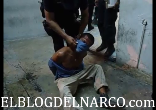 ... dejen en libertad   El Blog del Narco   Nota Roja   Tierra del Narco