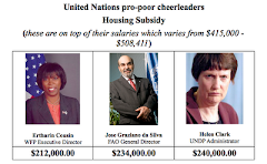 This is what pro-poor means at United Nations