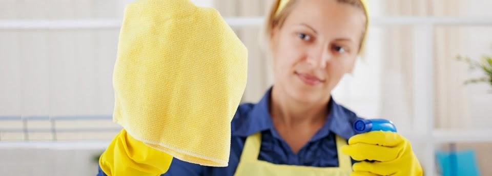 RTS Temizlik Şirketleri Temizlik Firmaları İstanbul Ev Ofis Temizliği