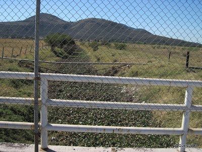 Canal de riego con lirio cerca de Cofradía