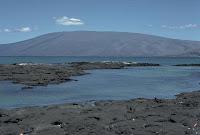 Darwin Volcano, Isabela Island, Galapagos