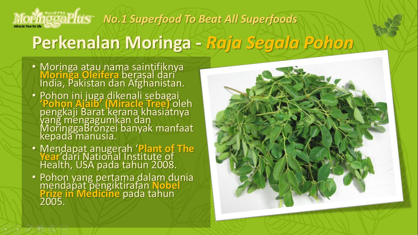 http://www.moringgaplusindonesia.com/p/produk.html