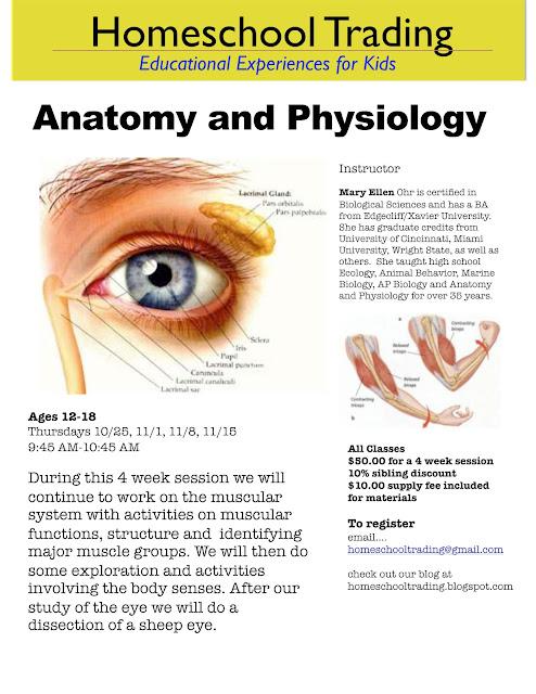 Anatomy in high school
