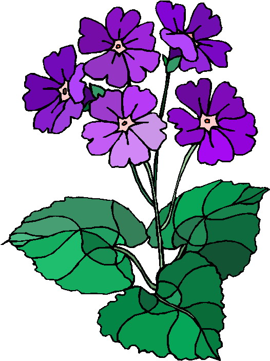 clipart of plants - photo #10