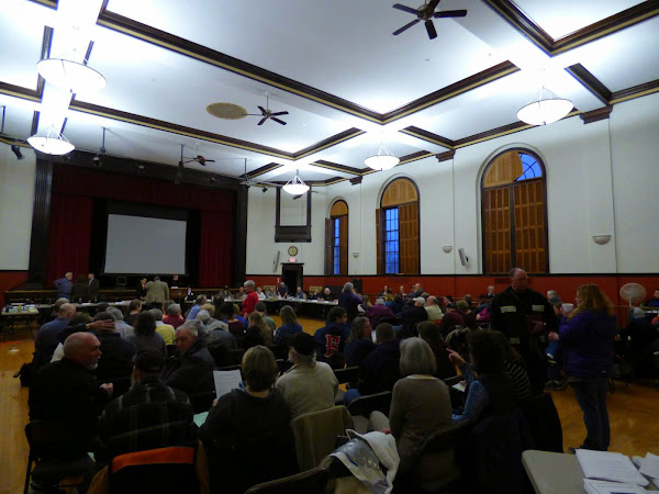 Town Meeting Recap & Photos-TIF District Established