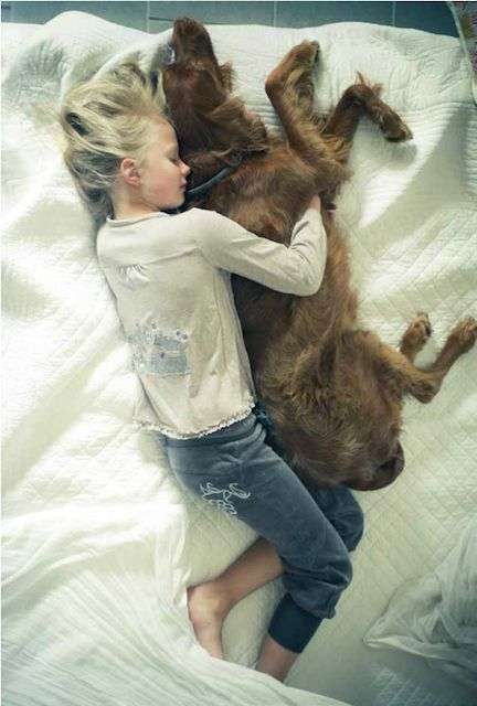 5 Signs That Your Dog Loves You