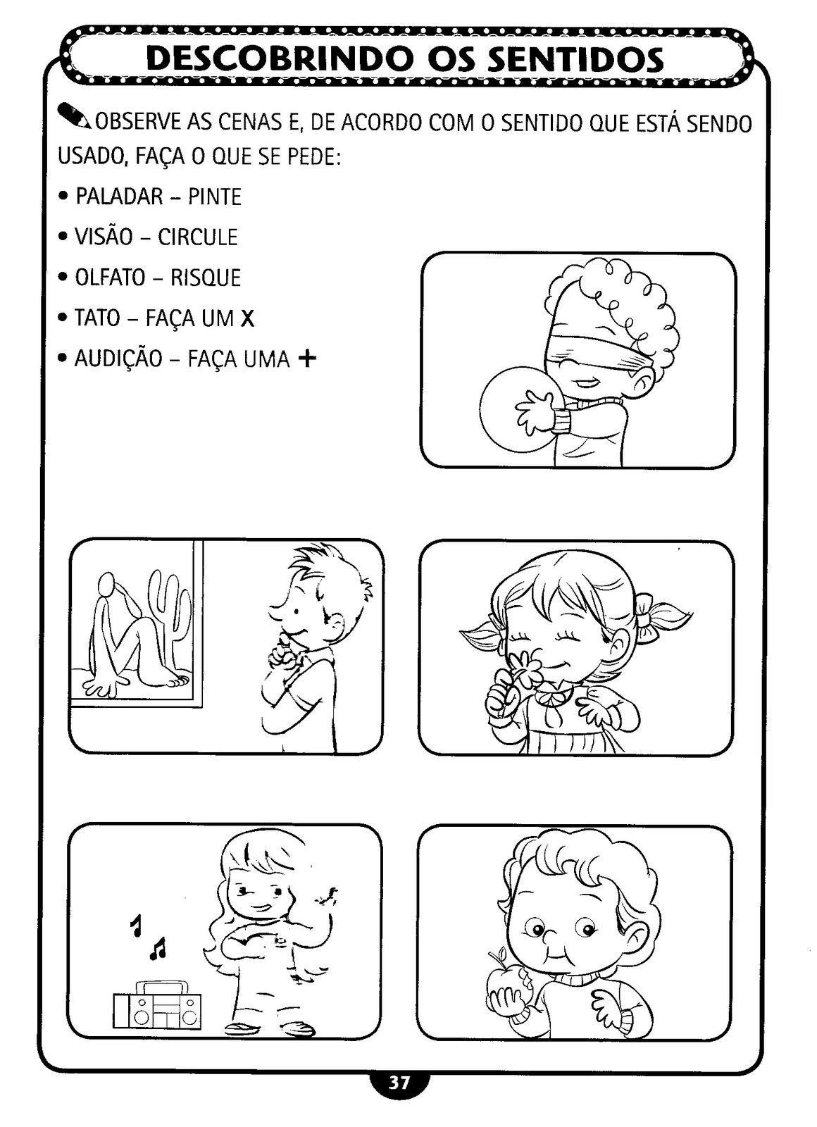Muitas vezes Alegria de Aprender na Educação Infantil: 5 SENTIDOS VA33
