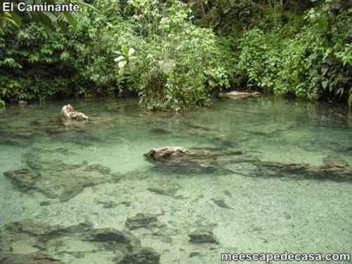 Aguas de color verde claro de la naciente del río Tioyacu (Rioja, Perú)- 3