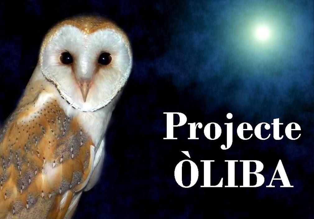 Projecte Òliba
