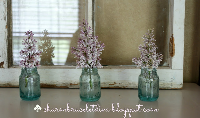 lilacs displayed in mini glass vases