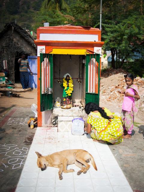 собака спит рядом с индийским божеством
