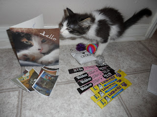 Love for Anakin the two legged cat presents from the UK