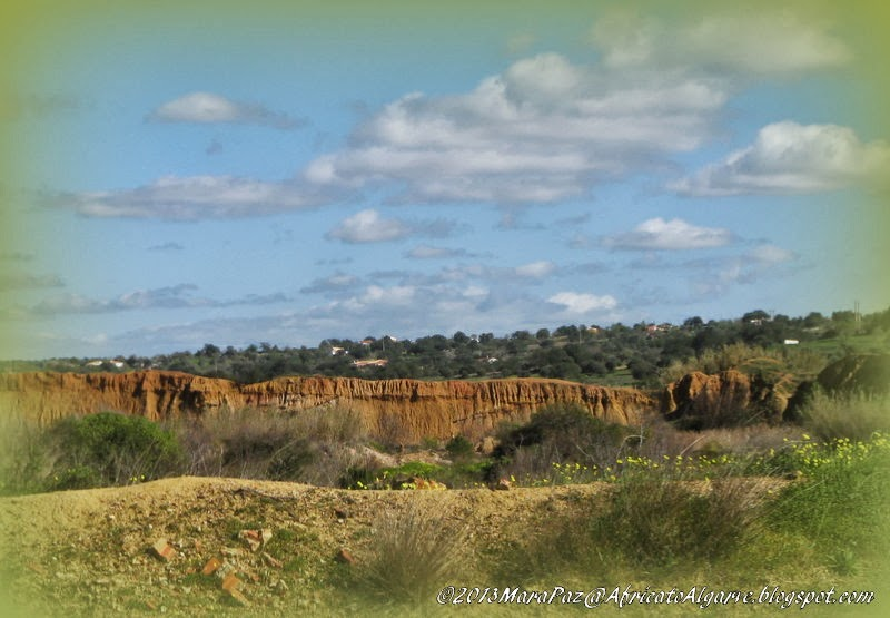 Algarve landscape after clay extraction