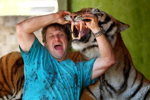 familia vive con tigres