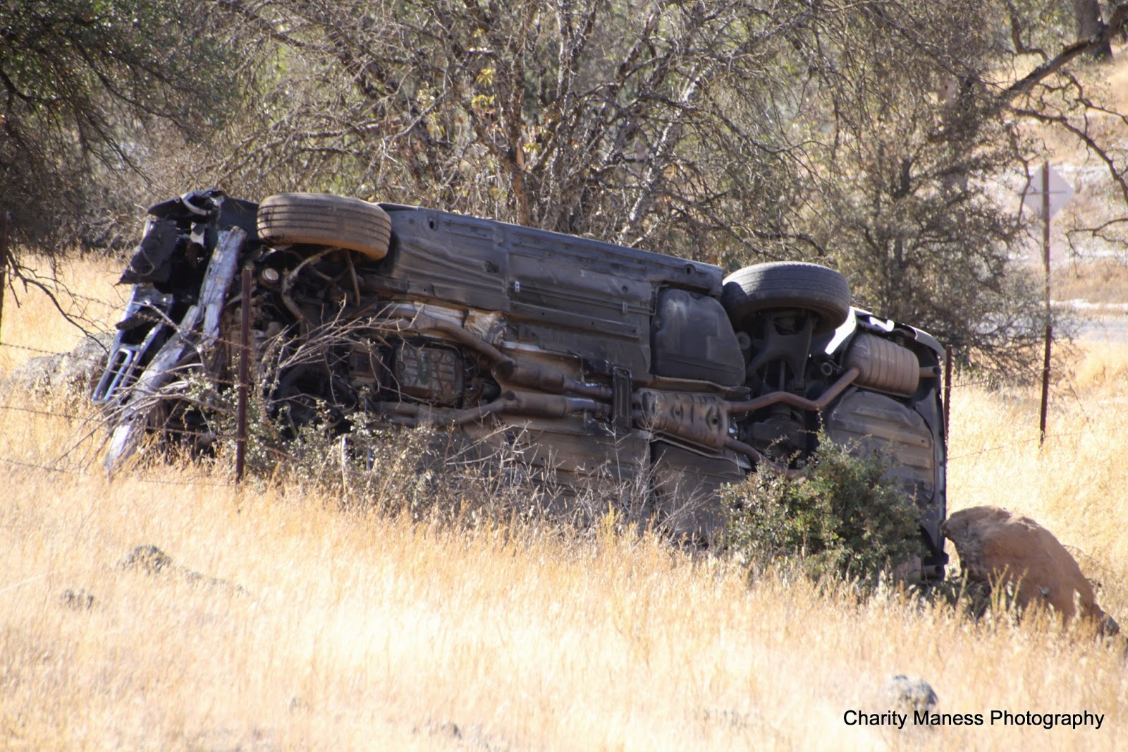 Usda Forest Service Car Accident Report