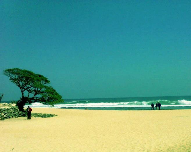 Pantai Pok Tunggal dengan pohon Durasnya