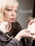The Tragedy of Amleth, Princess of Denmark