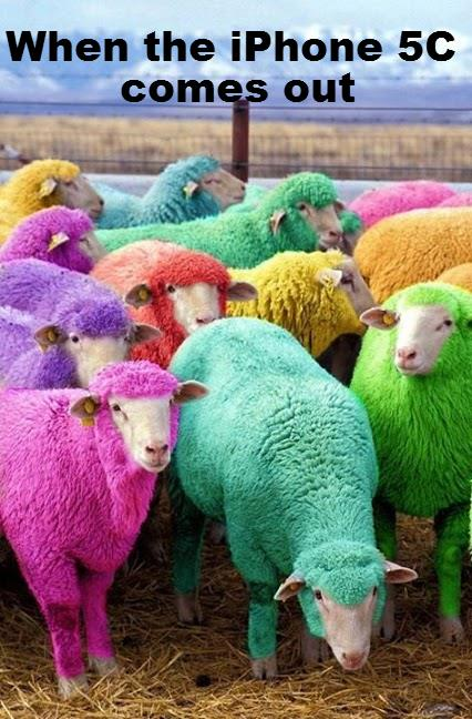 iPhone 5C bashing - Moutons aux couleurs de l'iPhone 5C