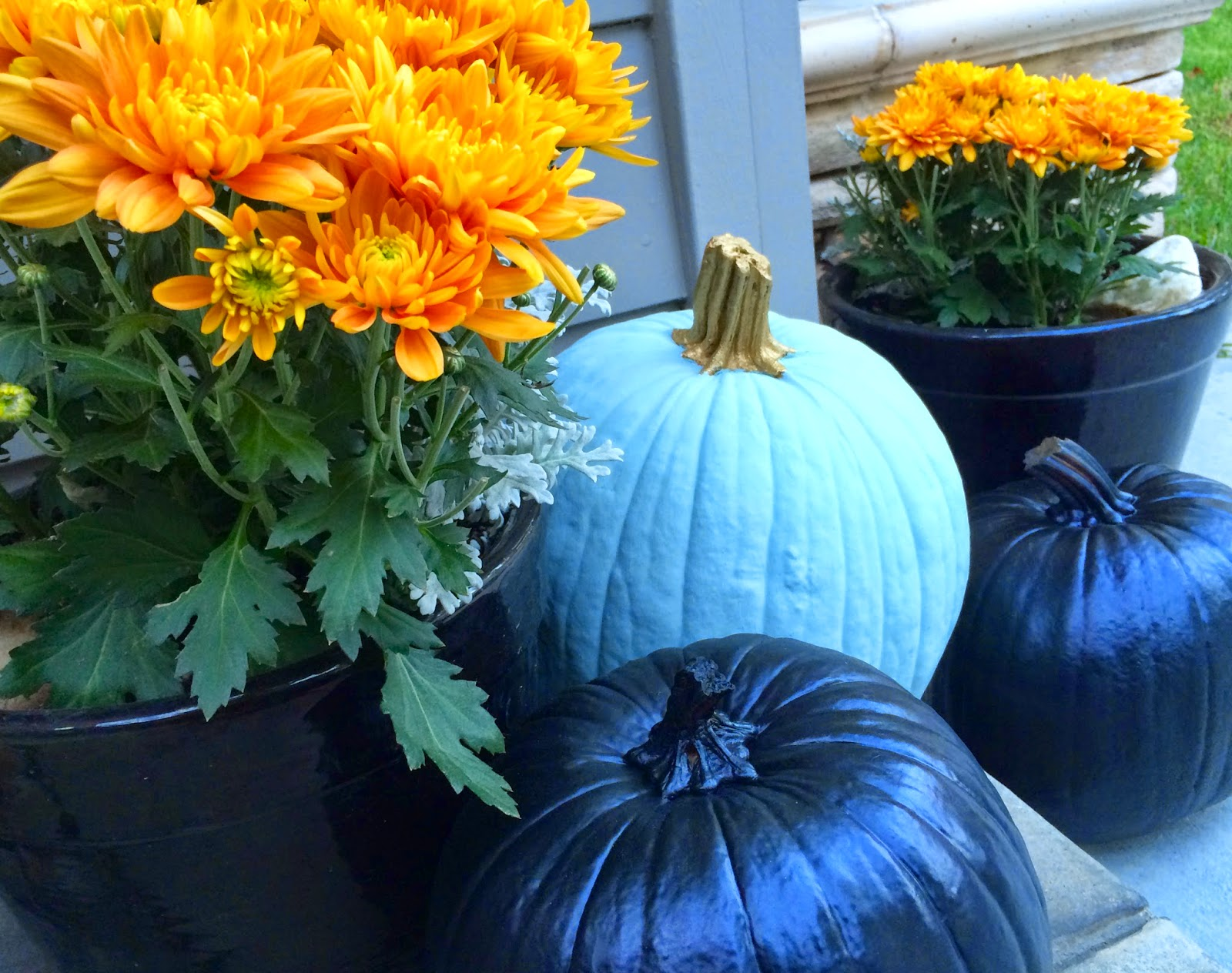 Sherri cassara designs painted pumpkins fall flowers and Flower painted pumpkins